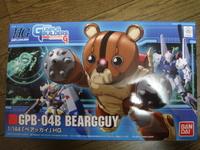 2010120401_hggpb_gpb04b_package