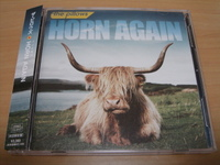 2011020111_the_pillows_horn_again
