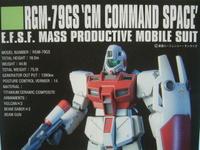 2011091111_rgm79gs_manual