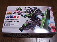 2012041600_hgage_rgec350_package