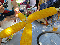 2012080405_apbankfes12_awaji_corn