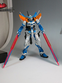 2013021603_mg_astray_bf_2nd_revise